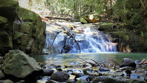 The Buderim Forest Waterfall No.4