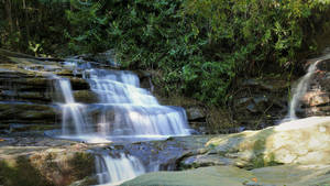 The Buderim Forest Waterfall No.6