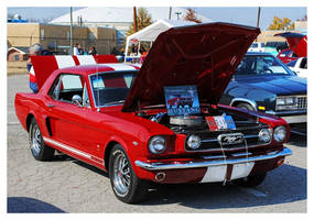 Red Mustang by TheMan268