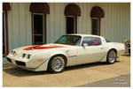 Cool White Trans AM