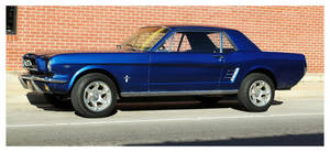 A Cool Blue Mustang