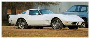A Sharp White Corvette by TheMan268