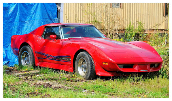 Another Corvette Wasting Away by TheMan268