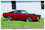An Eleanor Type Mustang