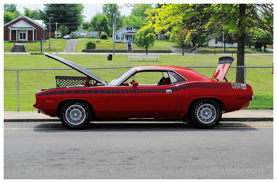 A Very Sharp Red Cuda by TheMan268
