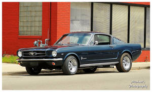 A Very Cool Fastback Mustang