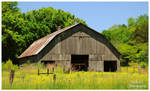 A Tennessee Barn In The Spring Time.