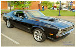 A Black Mustang