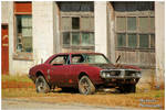 A Rusty Pontiac Firebird
