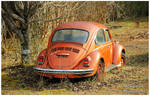 Salvage Yard VW by TheMan268
