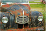 1950 Austin Grill and Hood Ornament by TheMan268