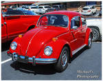 A Red Bug!