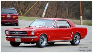 Red 65 Mustang