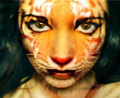 Tigeress by alleywaychosen