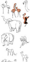 zoo sketches 2/2