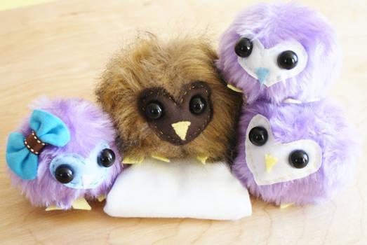 Plushy Owl Toys!