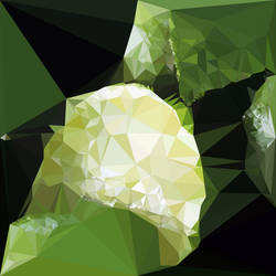 Abstract Art : Fruits : Lime by kenkchow