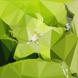 Abstract Art : Fruits : Starfruit