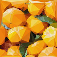 Abstract Art : Fruits : Tangerine by kenkchow