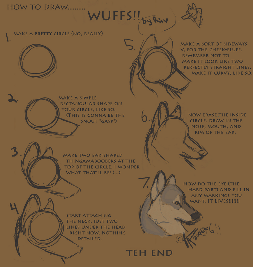 Wolf Head Tutorial by RiverWolf1o413