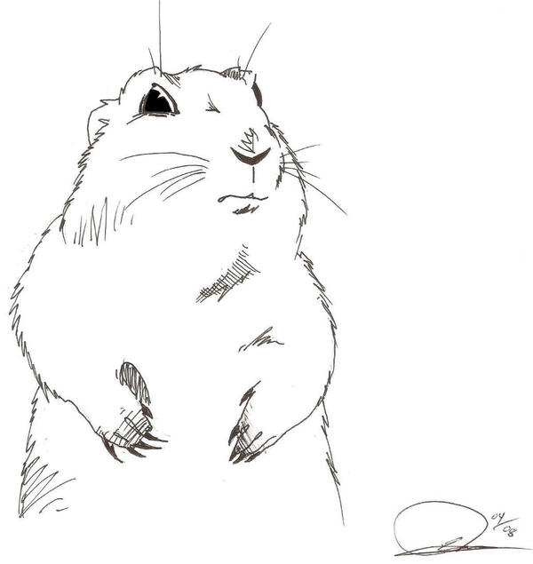 Dramatic Prairie Dog By Weaseltear On DeviantArt