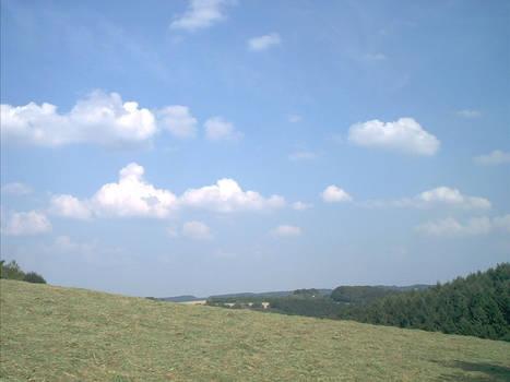 landscape09-08-02