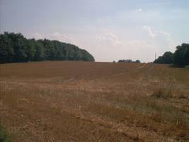 landscapeIII09-08-02