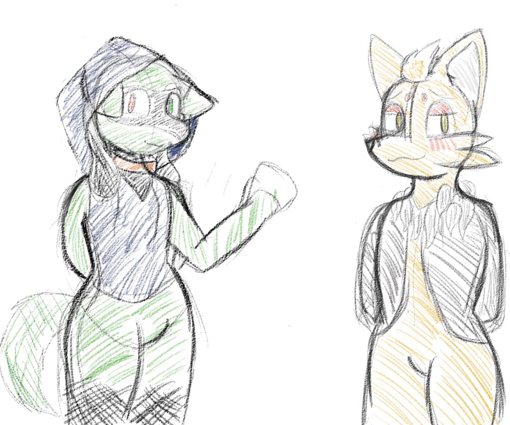 Zorua and riolu