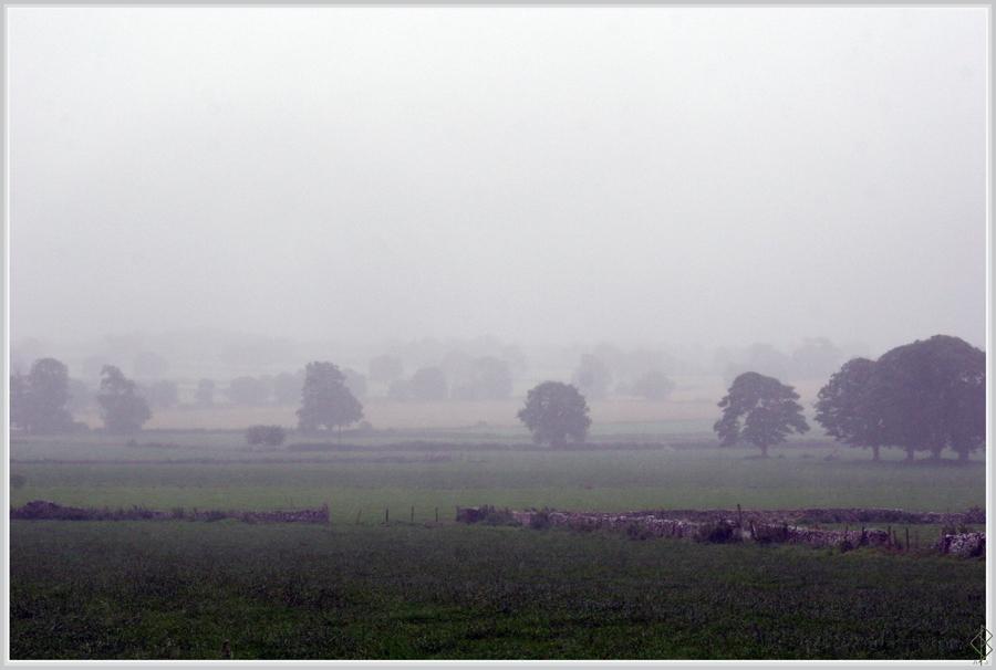 In the Rain... by AranwA-Tari