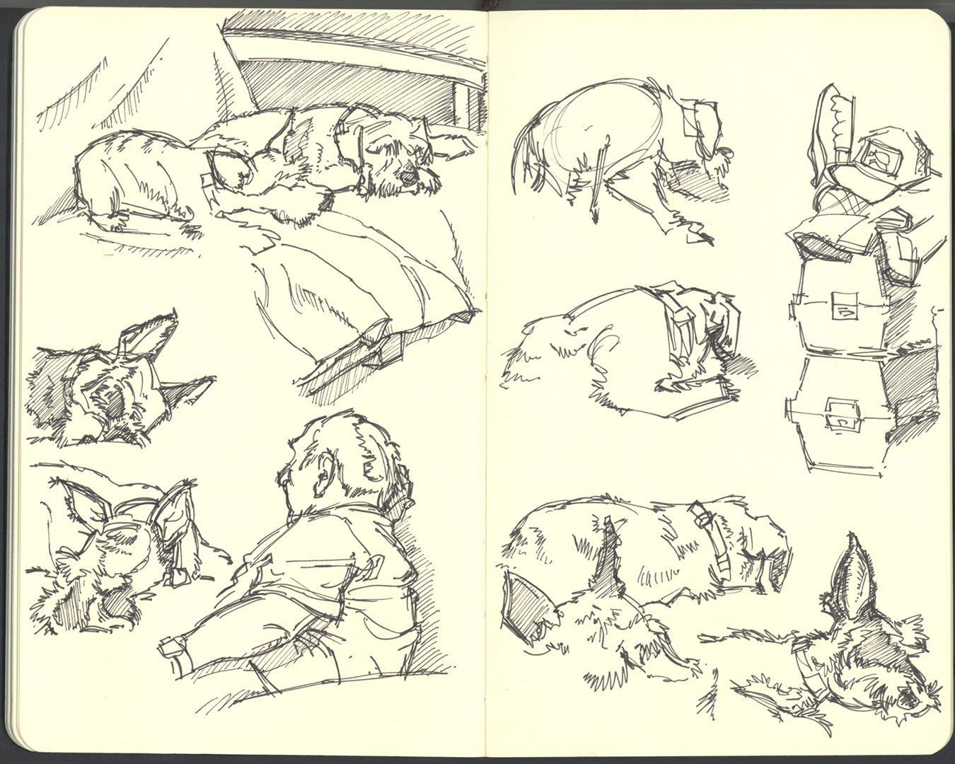 Sketchbook (2008/09): Page 12 by aka-Pencils