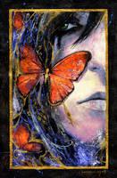 inside the butterfly by lunaRdeltaY