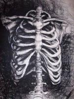 front veiw of ribs by StitchedUpRabbit