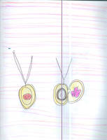 Ursa's locket by Kelseyalicia