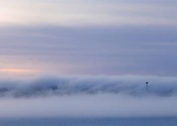 Misty Morning by Sara-Roth