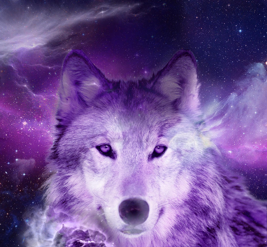 Louis Vuitton Logo Wallpaper Cool Hd besides Wolf Prayer Photo besides Fantasy Art Fox Girl in addition Me Sarcastic Never in addition Funny Looking Llamas Wallpapers Hd. on anime fox spirit cool wallpapers