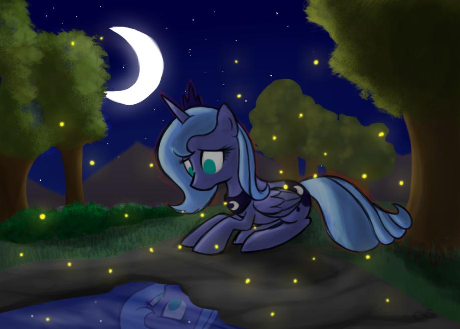 Nopony appreciates the night by CrashXSpyro