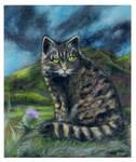 Scottish Wildcat by Frollino