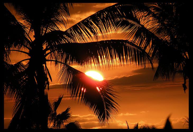 Bashful Sunset