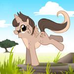 Pony ID