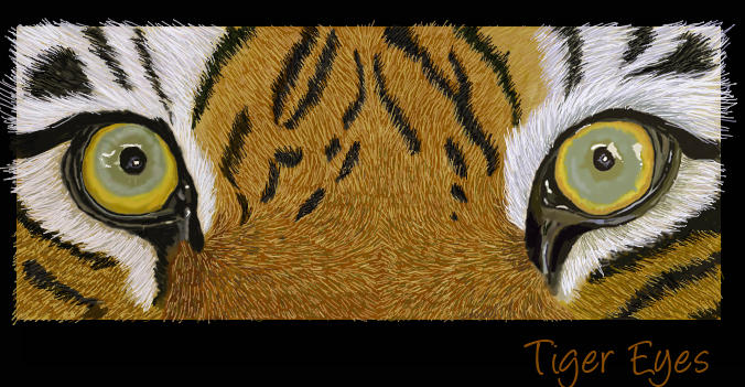 Tiger Eyes finished