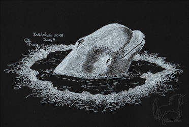 Inktober Day 5 - Arctic Whale by PolarisAstrum