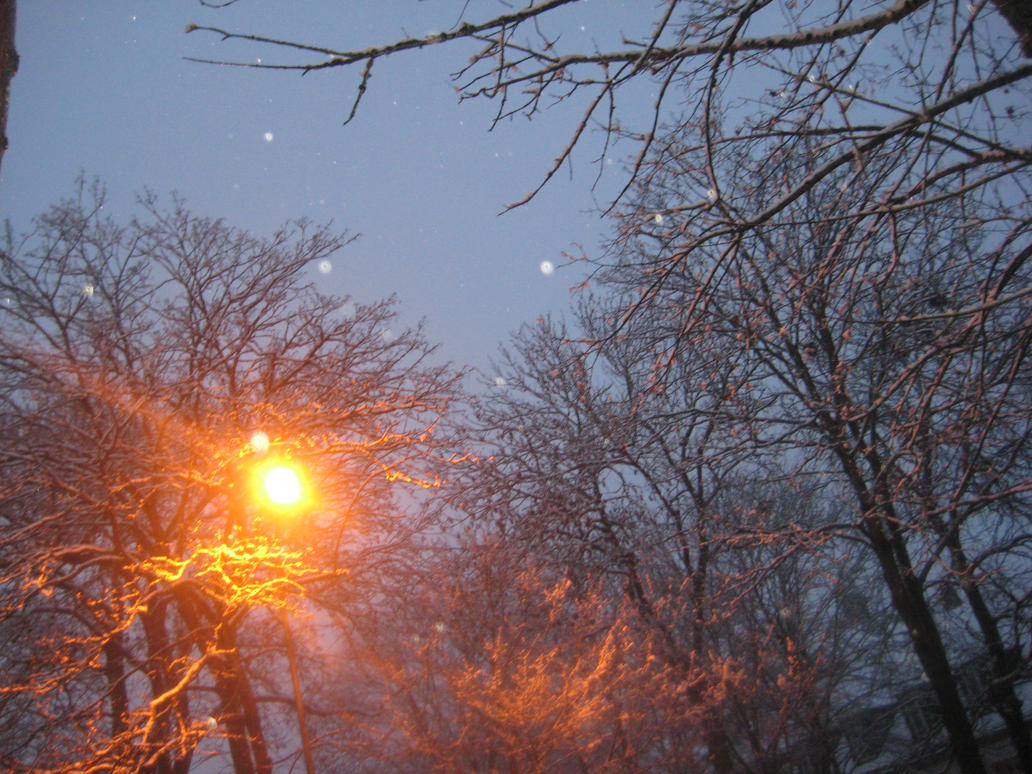 Winter Night with Light by Miumy96