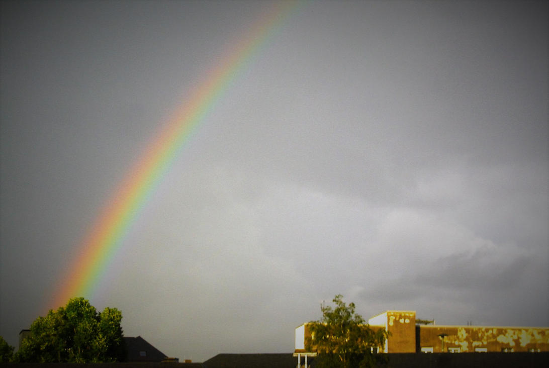 Rainbow by Miumy96