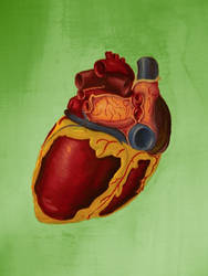 Heart by Chameleonperson