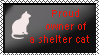 Proud owner of a shelter cat by xpekalx