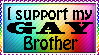 I support my gay brother by xpekalx