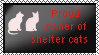 Proud owner of shelter cats by xpekalx