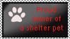 Proud owner of a shelter pet by xpekalx