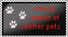 Proud owner of shelter pets by xpekalx