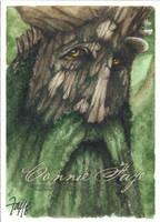 Treebeard by ConnieFaye